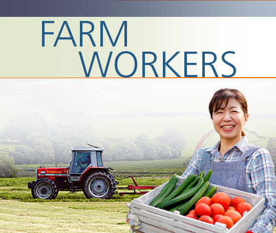 an analysis of farm workers Under the now-closed seasonal agricultural workers scheme in a farmers weekly survey about 20% of respondents who analysis: nfu scotland's post-brexit farm.